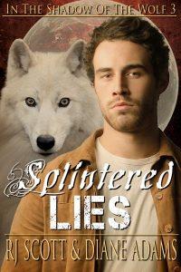 Splintered Eyes, MM Romance, Gay Romance, RJ Scott, Diane Adams