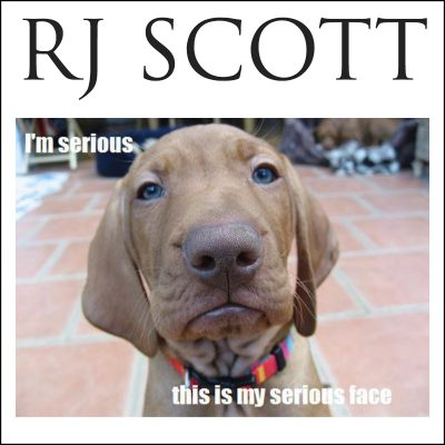 Serious Comments on Dreamshpinner Press - RJ Scott, USA Today bestselling author of Gay MM Romance