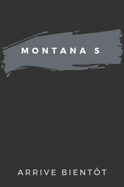 Montana 5 en Francais