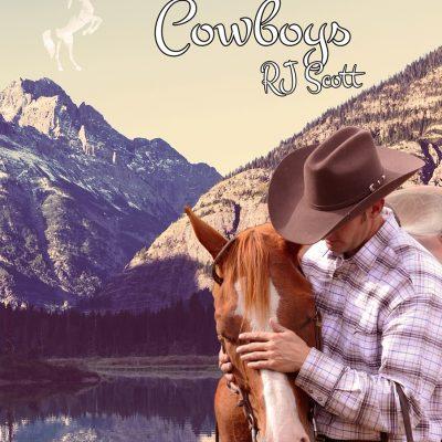 Neue Version – Das Zuhause eines Cowboys (Montana #3)