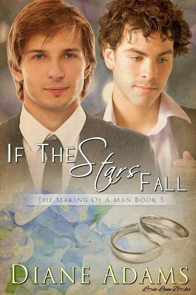Valentine Trail – If The Stars Fall by Diane Adams