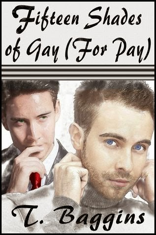 Fifteen Shades of Gay (For Pay) – T Baggins – Review