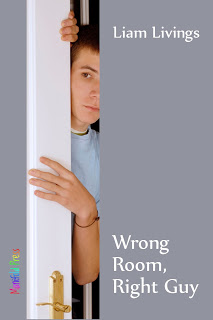 Giveaway: Wrong Room, Right Guy by Liam Livings