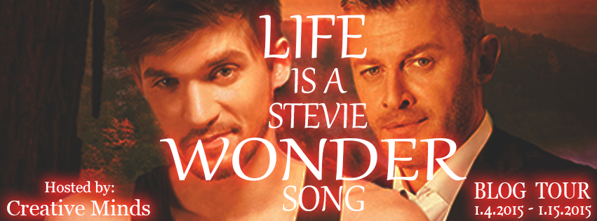 Life is a Stevie Wonder Song by V.L. Locey