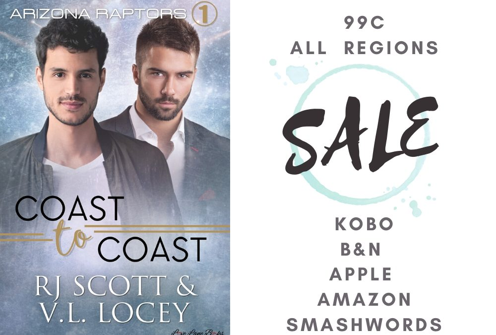 July Sale on Hockey Romance